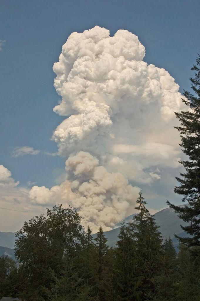 Hamill Creek Fire  August 5, 2007  (4:04 PM)