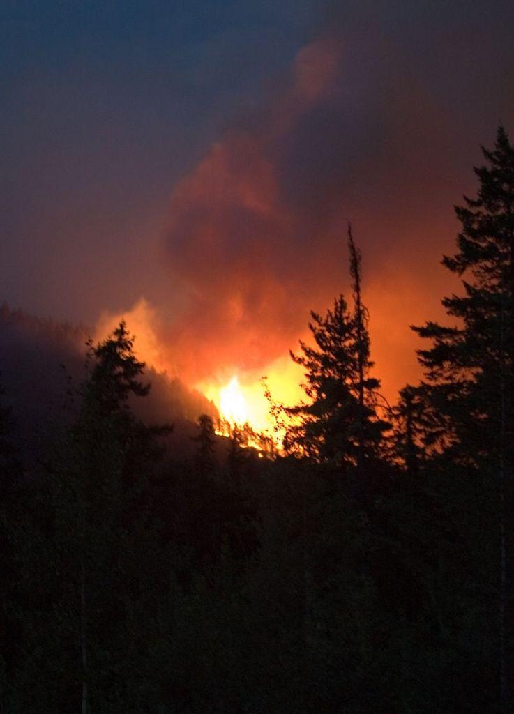 Hamill Creek Fire  July 30, 2007  (10:18)